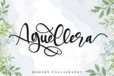 Aguellera illustration 2