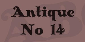 Antique No 14 illustration 1