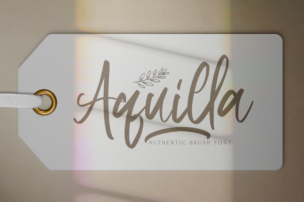 Aquilla illustration 1