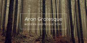Aron Grotesque illustration 7