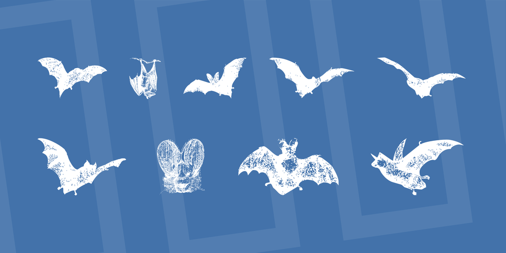 BatBats illustration 1