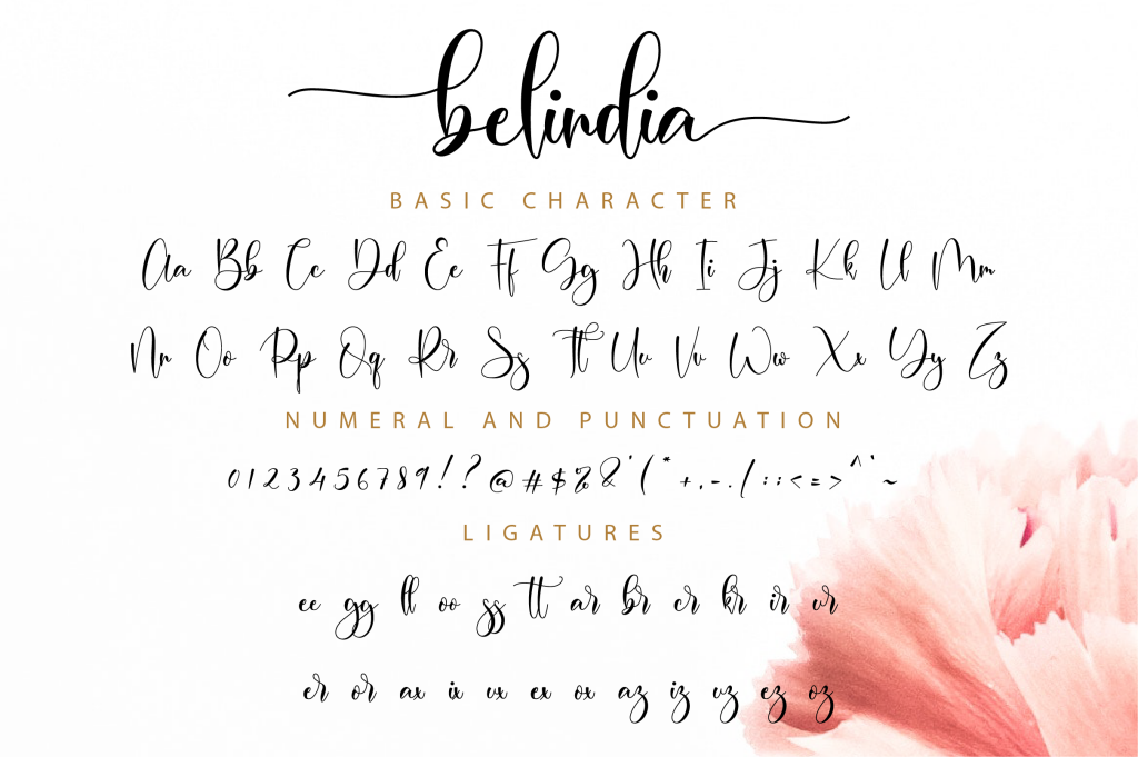 Belindia illustration 12