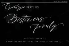 Bestowens family illustration 5