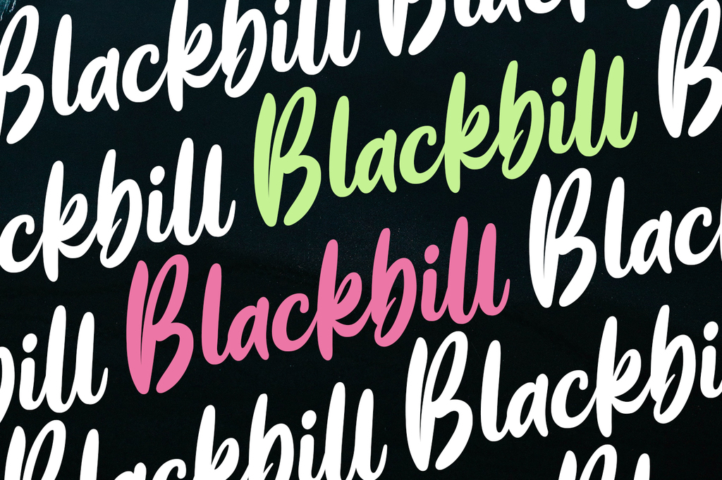 Blackbill illustration 6