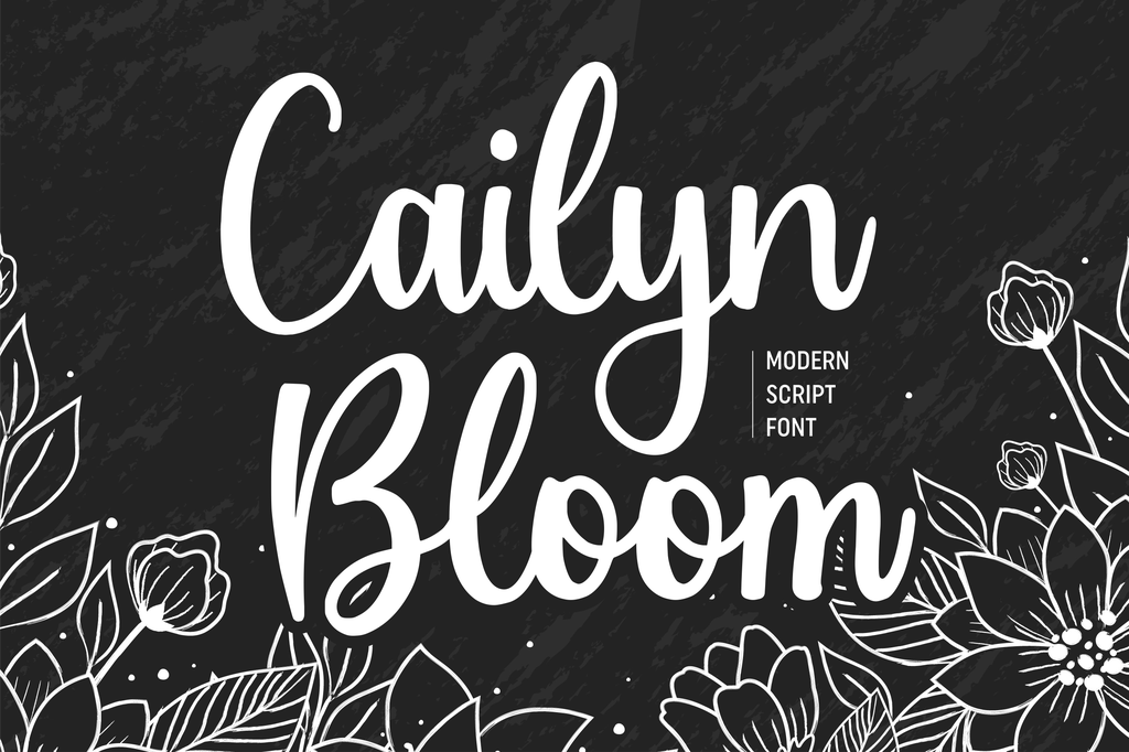 Cailyn Bloom illustration 8