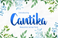 cantika illustration 6