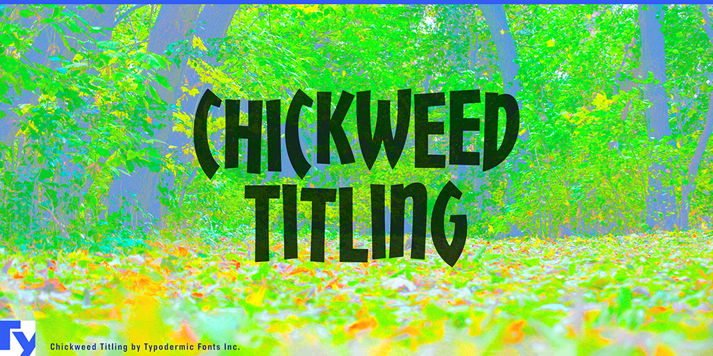 Chickweed Titling illustration 10