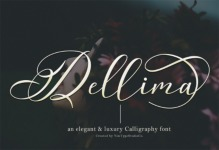 Dellima illustration 5