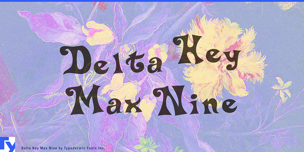 Delta Hey Max 9 illustration 14