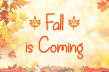 Fall is Coming illustration 6