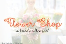 Flower Shop illustration 2
