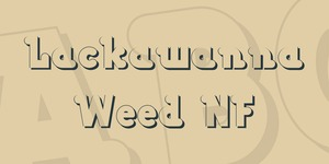 Lackawanna Weed NF illustration 1