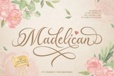 Madelican illustration 22