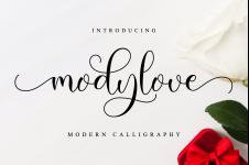 Modylove illustration 2