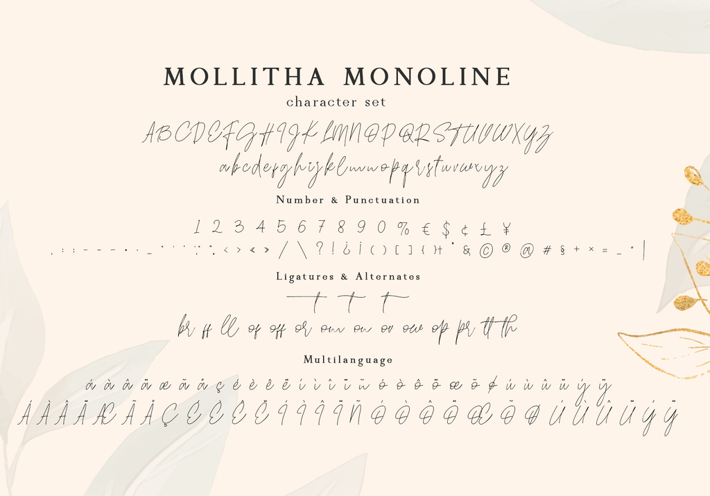 Mollitha illustration 5