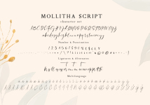 Mollitha illustration 6