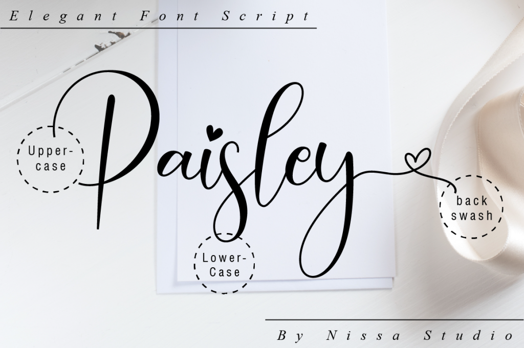 Paisley illustration 12