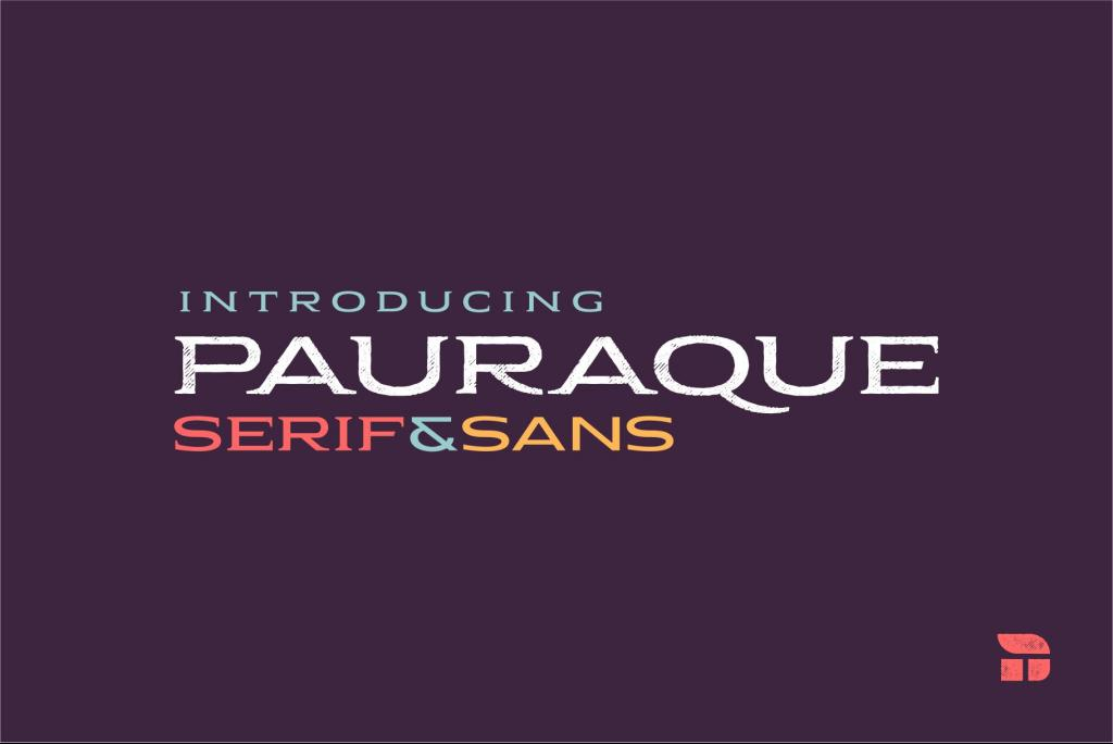 Pauraque_Serif_Rough illustration 2