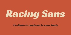 Racing Sans One illustration 10