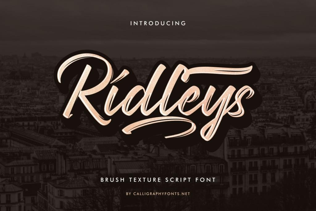 Ridleys Demo illustration 2