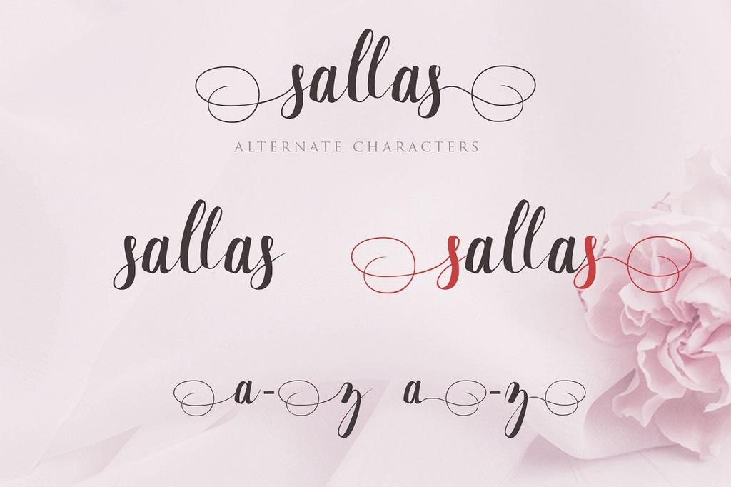 Sallas illustration 2