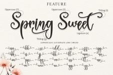 Spring Sweet - Personal Use illustration 9