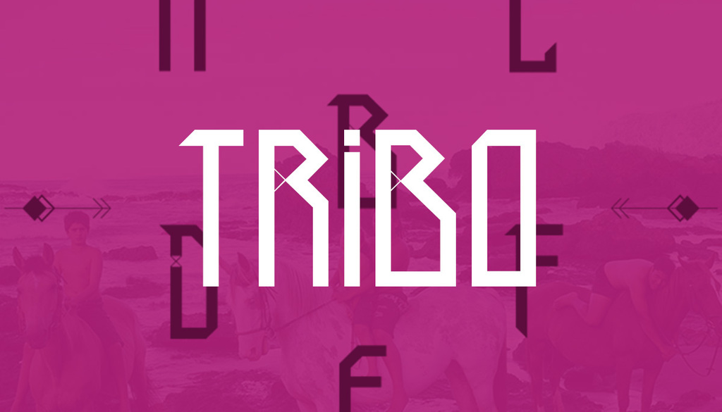 Tribo illustration 4