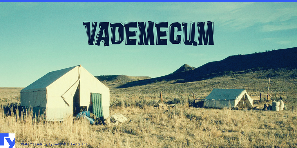 Vademecum illustration 10