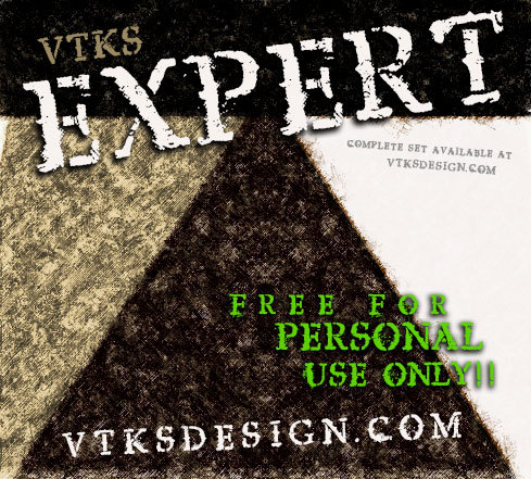 vtks expert illustration 1