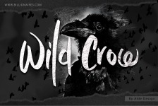 Wild Crow illustration 1