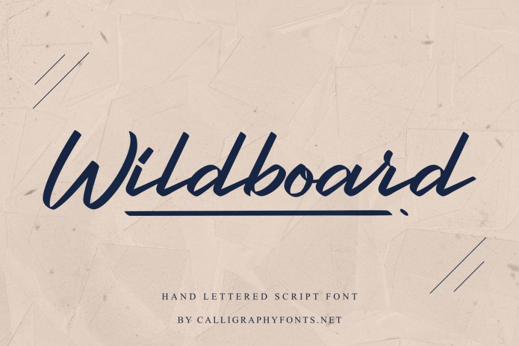 Wildboard Demo illustration 11
