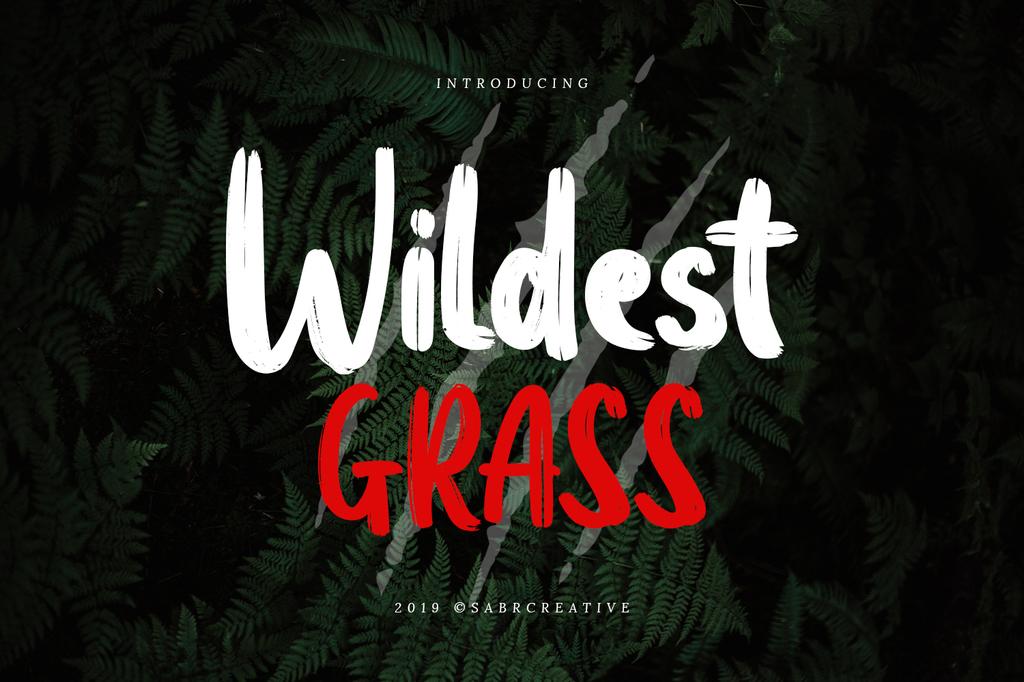 Wildest Grass Demo illustration 2