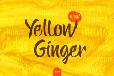 Yellow Ginger illustration 13